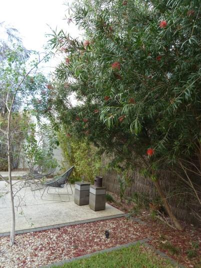 Church St - The 'spare block' native garden